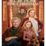 Estarei em casa para o Natal (2017) Dublado / Dual Áudio WEBRip 720p | 1080p – Torrent Download