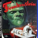 Frankenstein (Clássico) Torrent (1931) Dual Áudio / Dublado BluRay 720p – Download