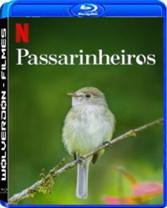 Passarinheiros Torrent (2020) Dual Áudio / Dublado WEB-DL 1080p – Download